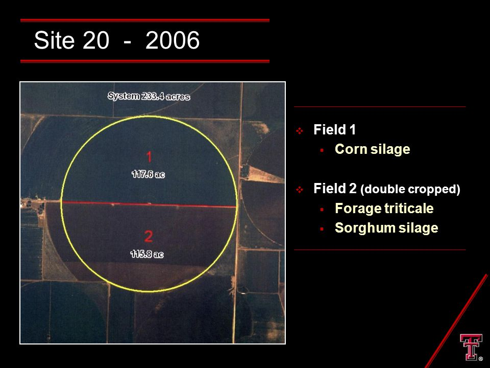 Site 20 - 2006  Field 1  Corn silage  Field 2 (double cropped)  Forage triticale  Sorghum silage ®