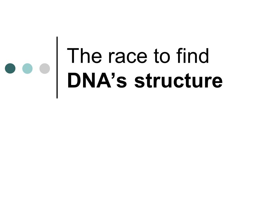 The race to find DNA's structure