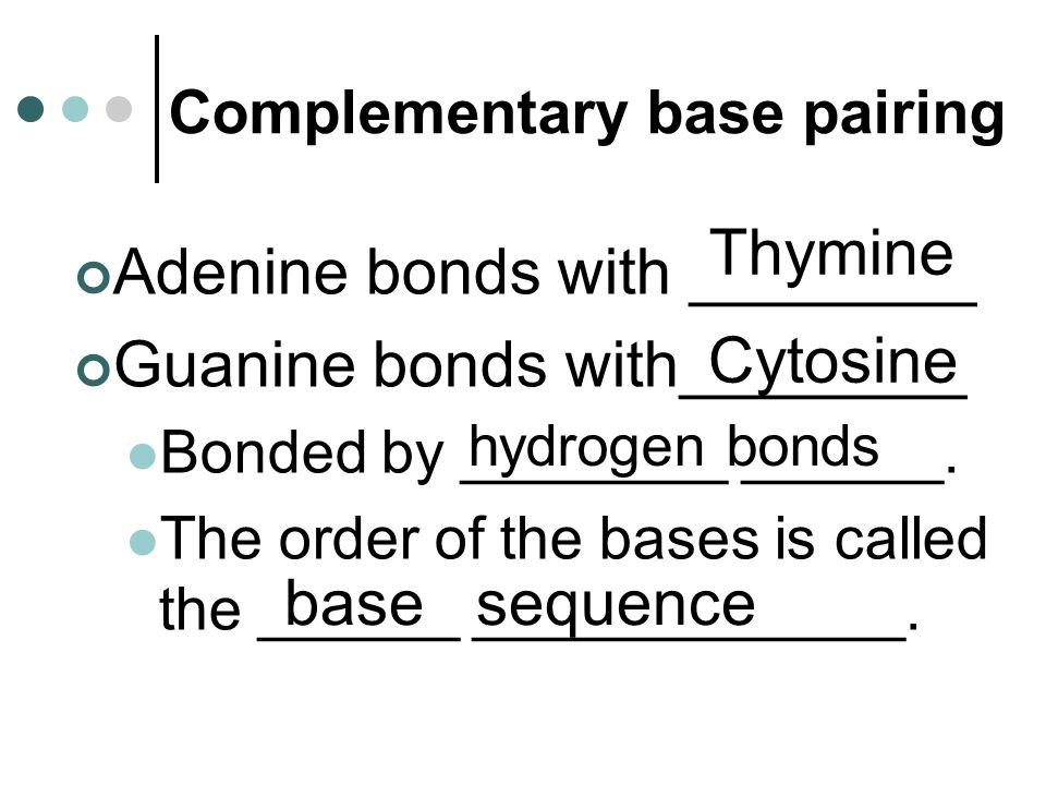 Complementary base pairing Adenine bonds with ________ Guanine bonds with________ Bonded by ________ ______.
