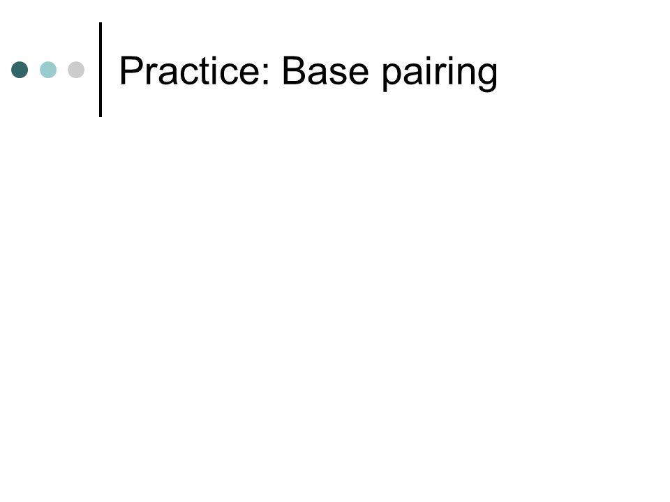Practice: Base pairing