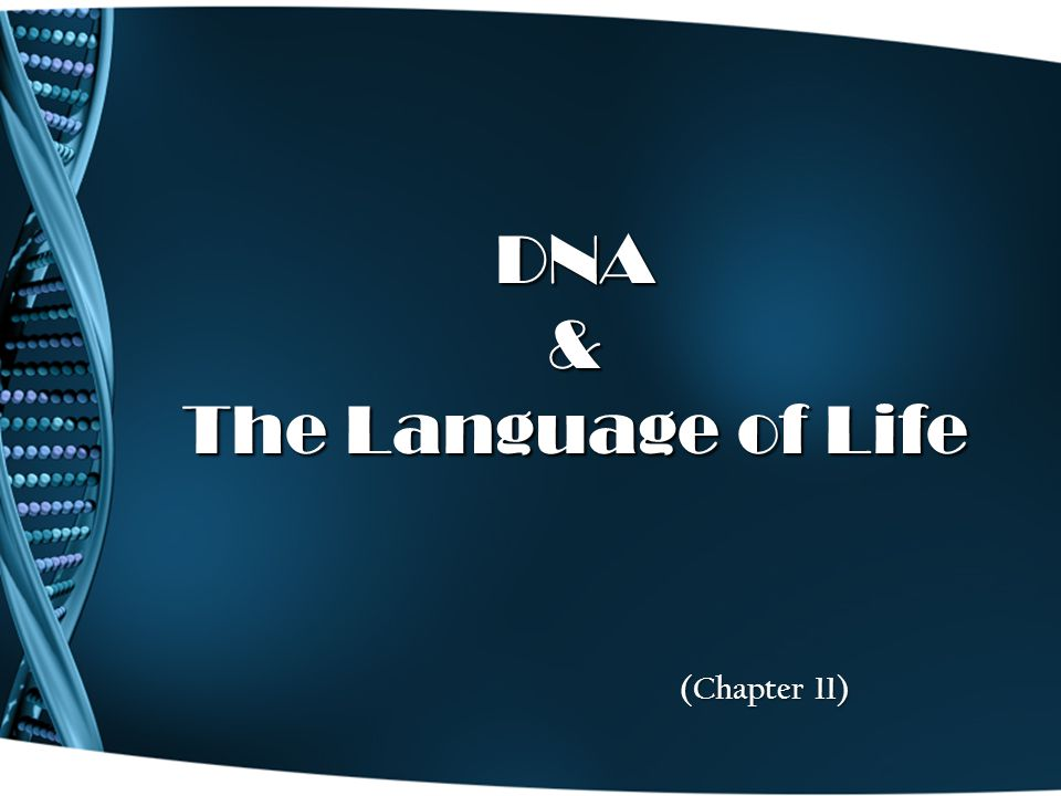 DNA & The Language of Life (Chapter 11)