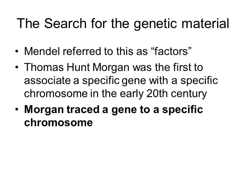 The Search for the genetic material Mendel referred to this as factors Thomas Hunt Morgan was the first to associate a specific gene with a specific chromosome in the early 20th century Morgan traced a gene to a specific chromosome