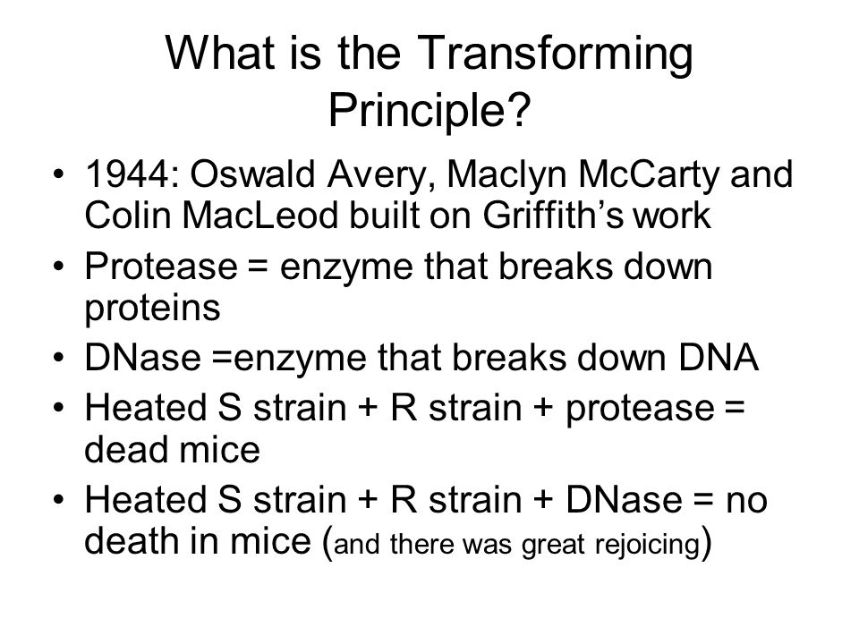 What is the Transforming Principle.