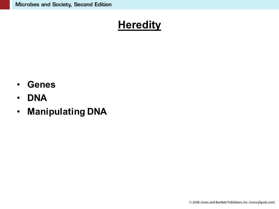 Heredity Genes DNA Manipulating DNA