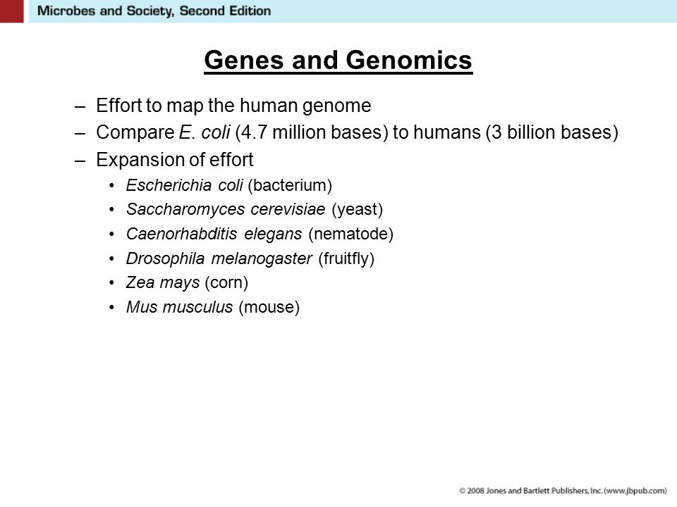 Genes and Genomics –Effort to map the human genome –Compare E. coli (4.7 million bases) to humans (3 billion bases) –Expansion of effort Escherichia c
