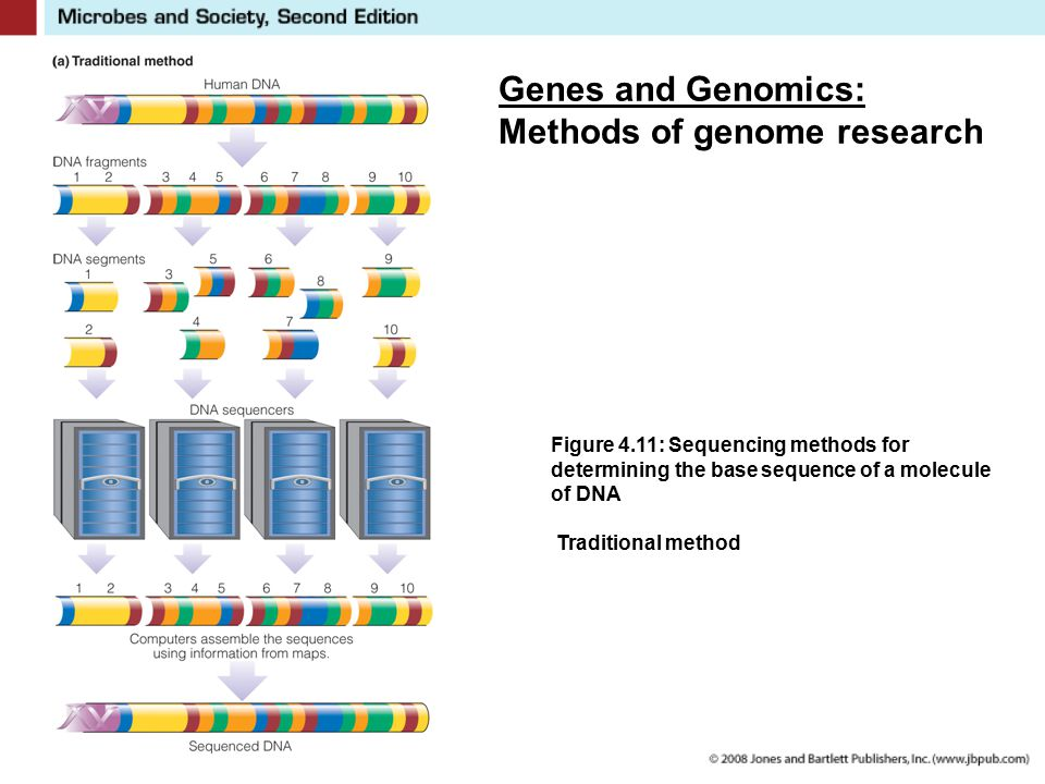 Genes and Genomics: Methods of genome research Figure 4.11: Sequencing methods for determining the base sequence of a molecule of DNA Traditional meth