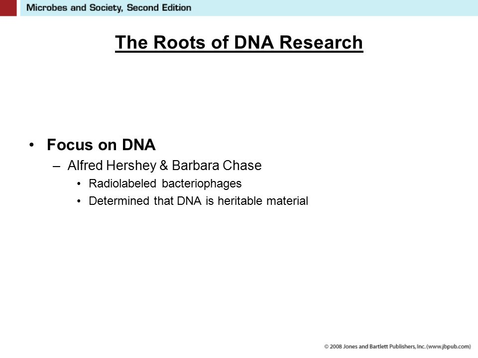 The Roots of DNA Research Focus on DNA –Alfred Hershey & Barbara Chase Radiolabeled bacteriophages Determined that DNA is heritable material