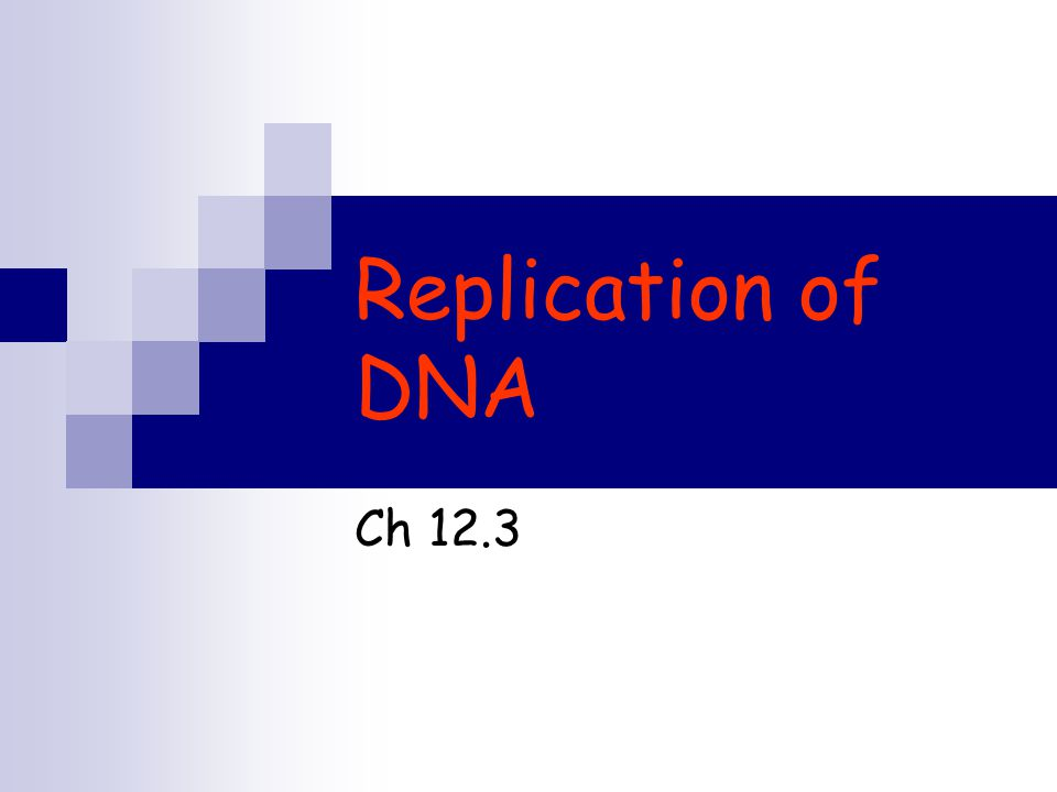 Replication of DNA Ch 12.3