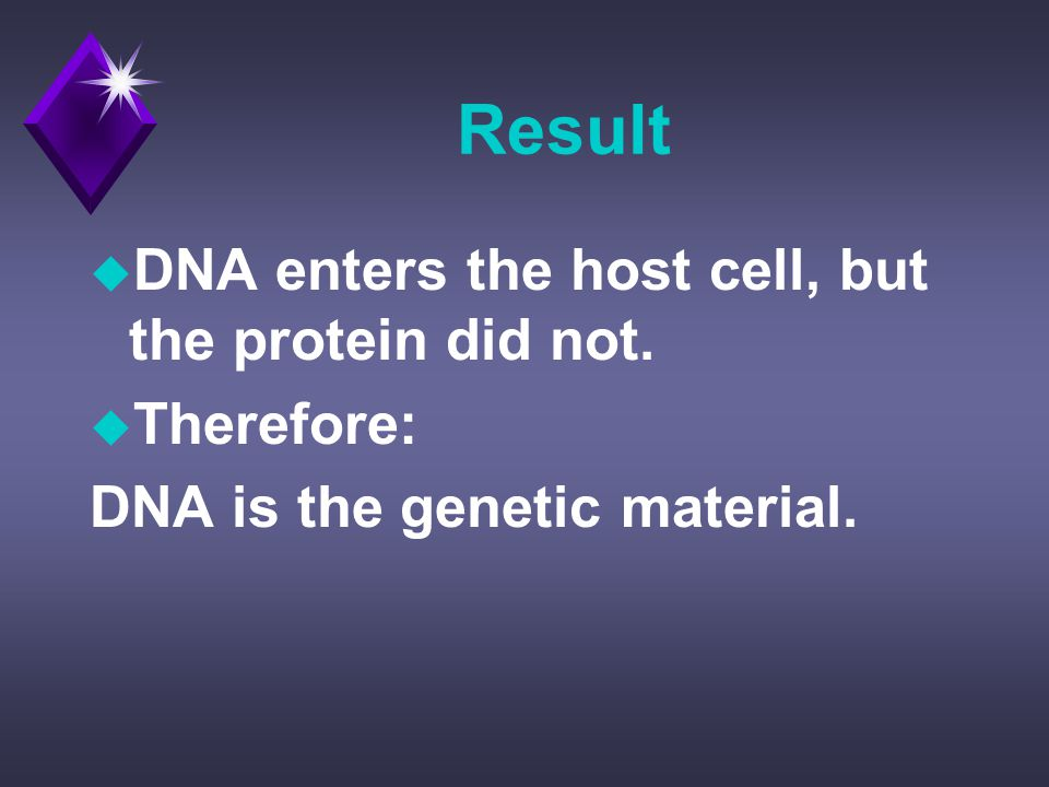 Result u DNA enters the host cell, but the protein did not.