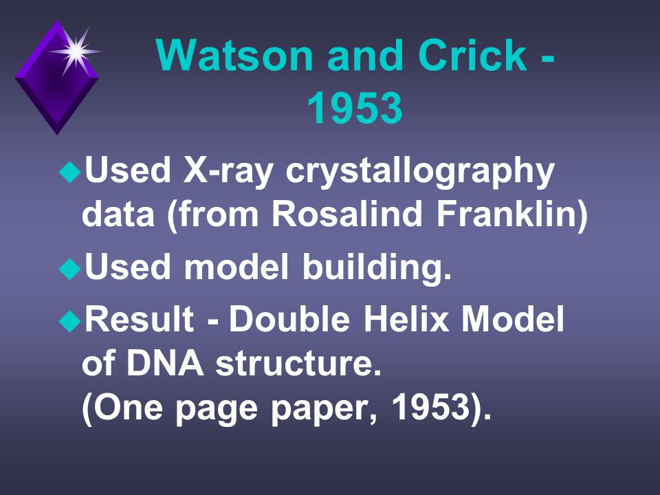 Watson and Crick - 1953 u Used X-ray crystallography data (from Rosalind Franklin) u Used model building.