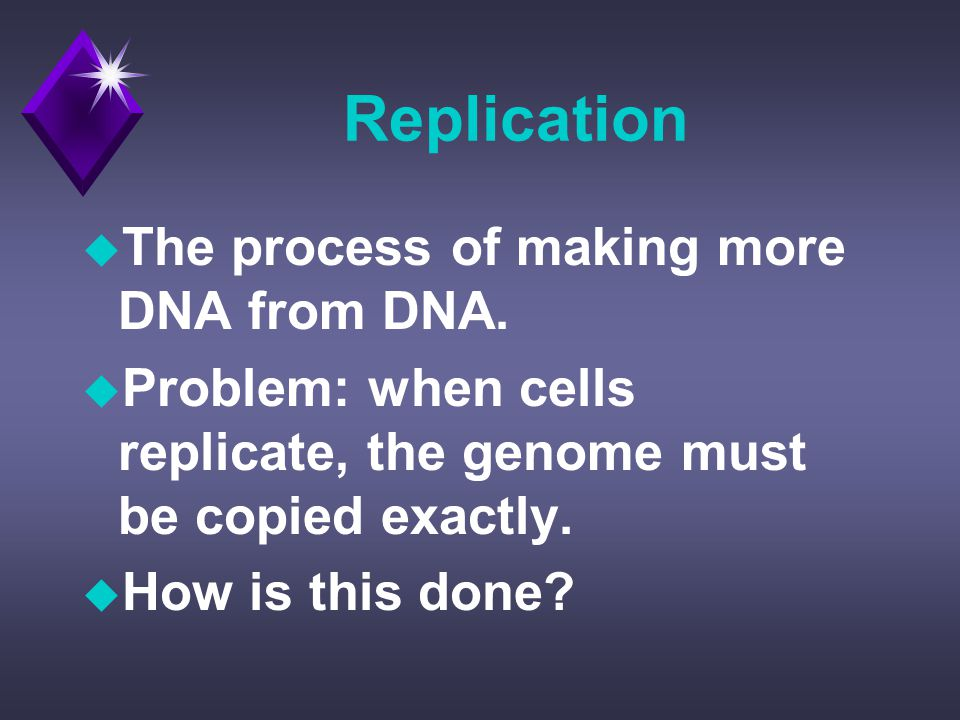 Replication u The process of making more DNA from DNA.