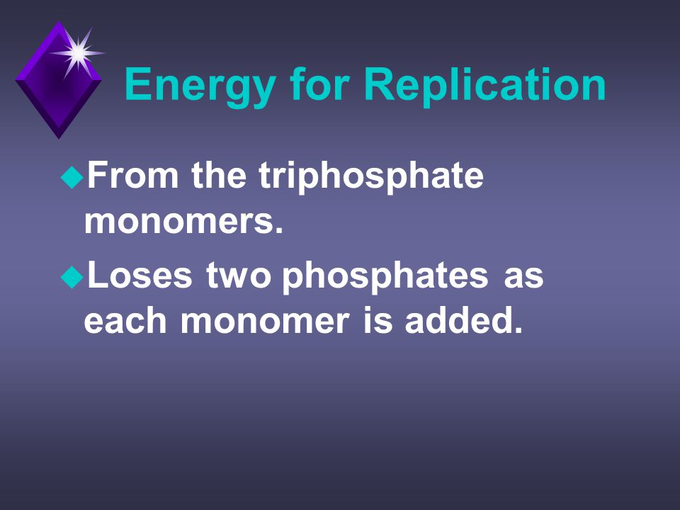 Energy for Replication u From the triphosphate monomers.