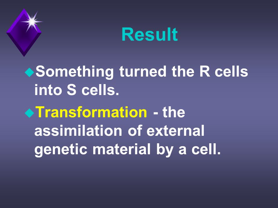 Result u Something turned the R cells into S cells.