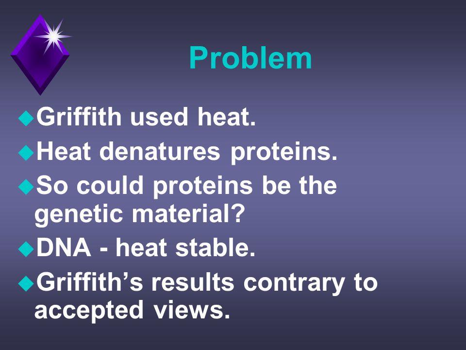 Problem u Griffith used heat. u Heat denatures proteins.