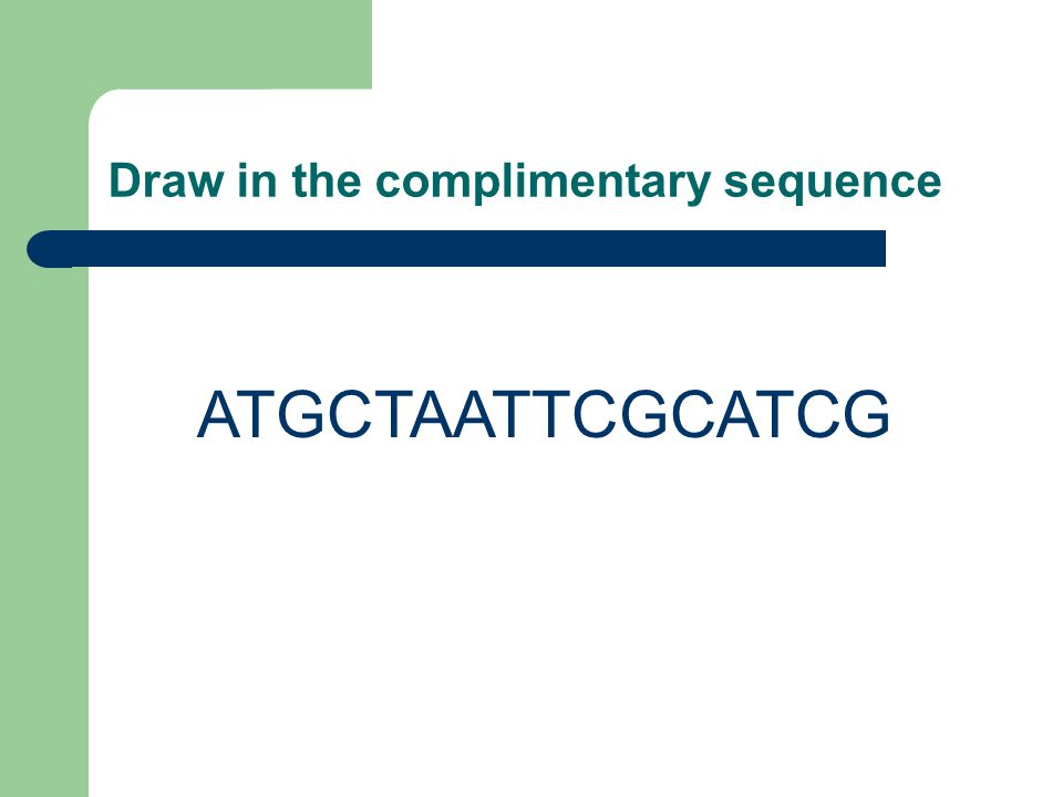 Draw in the complimentary sequence ATGCTAATTCGCATCG