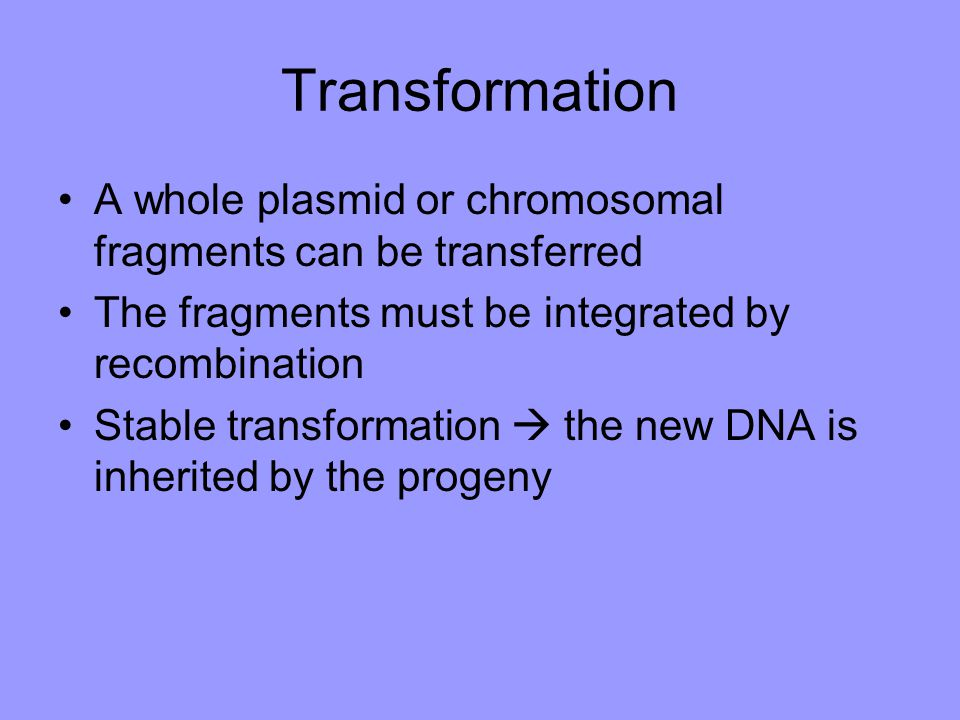 Transformation A whole plasmid or chromosomal fragments can be transferred The fragments must be integrated by recombination Stable transformation  t