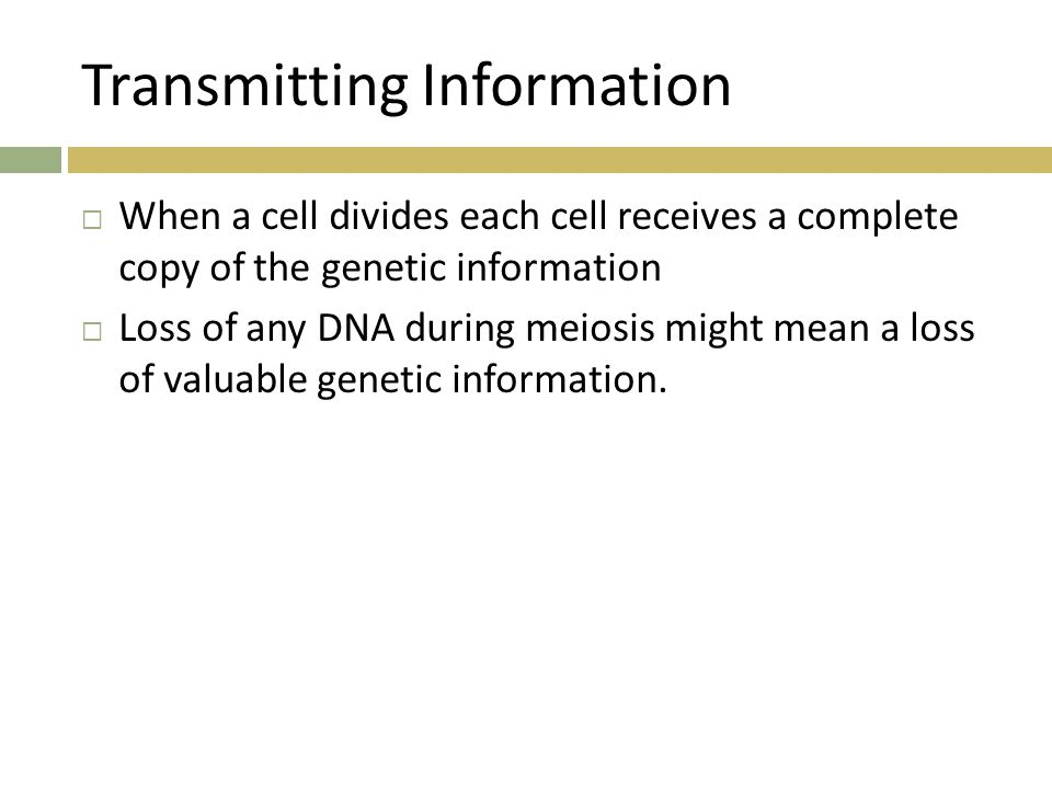Transmitting Information  When a cell divides each cell receives a complete copy of the genetic information  Loss of any DNA during meiosis might me