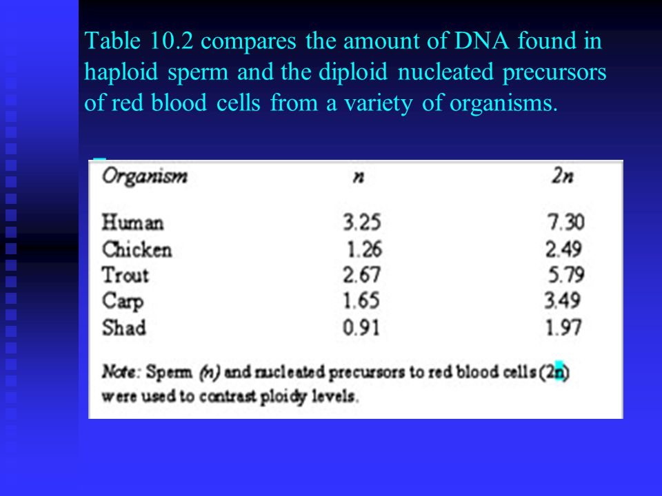 Table 10.2 compares the amount of DNA found in haploid sperm and the diploid nucleated precursors of red blood cells from a variety of organisms.