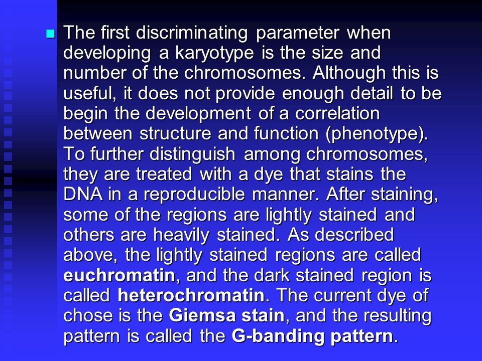 The first discriminating parameter when developing a karyotype is the size and number of the chromosomes.