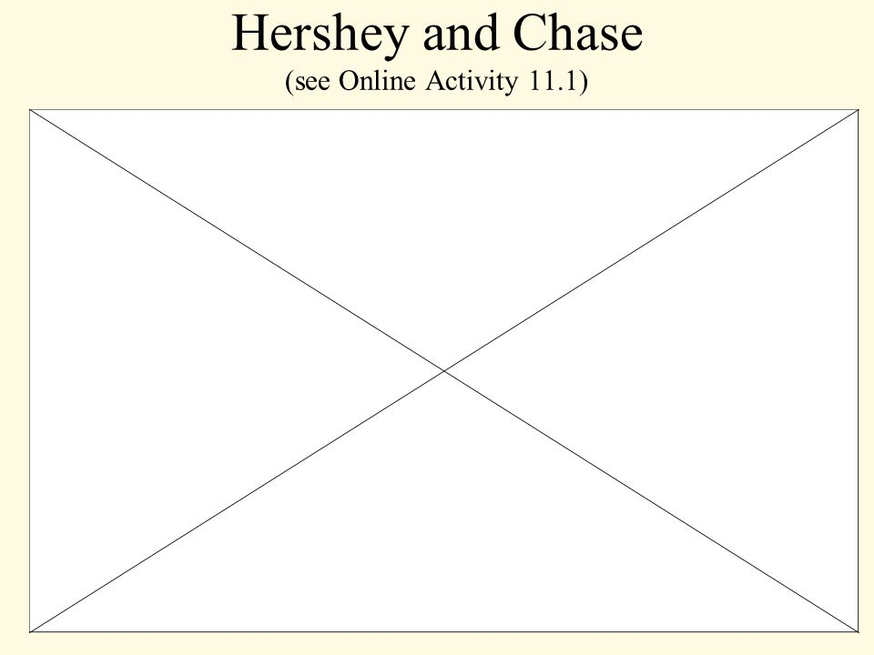 Hershey and Chase (see Online Activity 11.1)