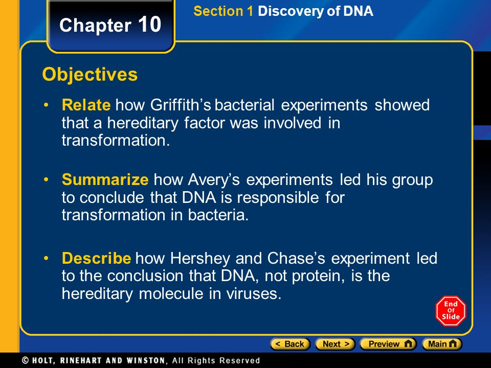 DNA, RNA, and Protein Synthesis Chapter 10 Table of Contents Section 1 Discovery of DNA Section 2 DNA Structure Section 3 DNA Replication Section 4 Pr
