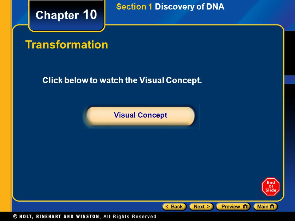 Chapter 10 Translation: Assembling Proteins Section 4 Protein Synthesis