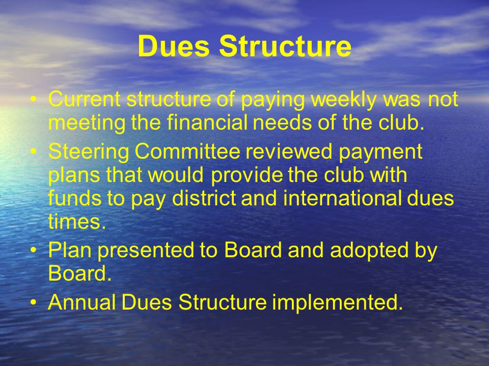 Steering Committee Identified Areas of Concern that were affecting the attendance and growth of the club Club Dues Structure Weekly Meeting Format Leadership Structure/Perspective Board Members Goal Setting for the future of Howell Rotary Club Committee Member Assignments Committee Structure & Committee Activity Membership Committee Chair Fundraising Committee Co-Chairs