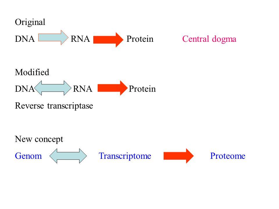 Original DNARNAProteinCentral dogma Modified DNA RNA Protein Reverse transcriptase New concept GenomTranscriptomeProteome