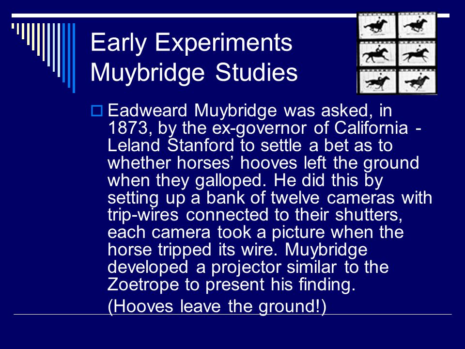 Early Experiments Muybridge Studies  Eadweard Muybridge was asked, in 1873, by the ex-governor of California - Leland Stanford to settle a bet as to whether horses' hooves left the ground when they galloped.