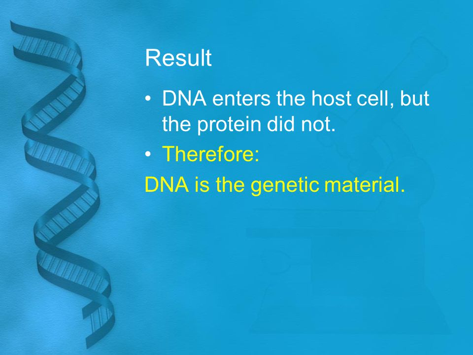 Result DNA enters the host cell, but the protein did not. Therefore: DNA is the genetic material.