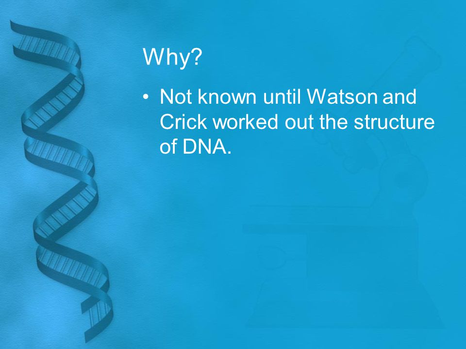 Why Not known until Watson and Crick worked out the structure of DNA.