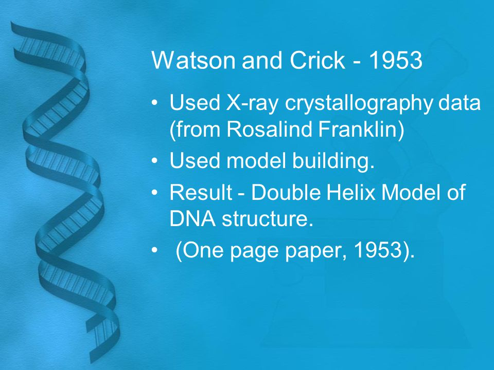 Watson and Crick - 1953 Used X-ray crystallography data (from Rosalind Franklin) Used model building.