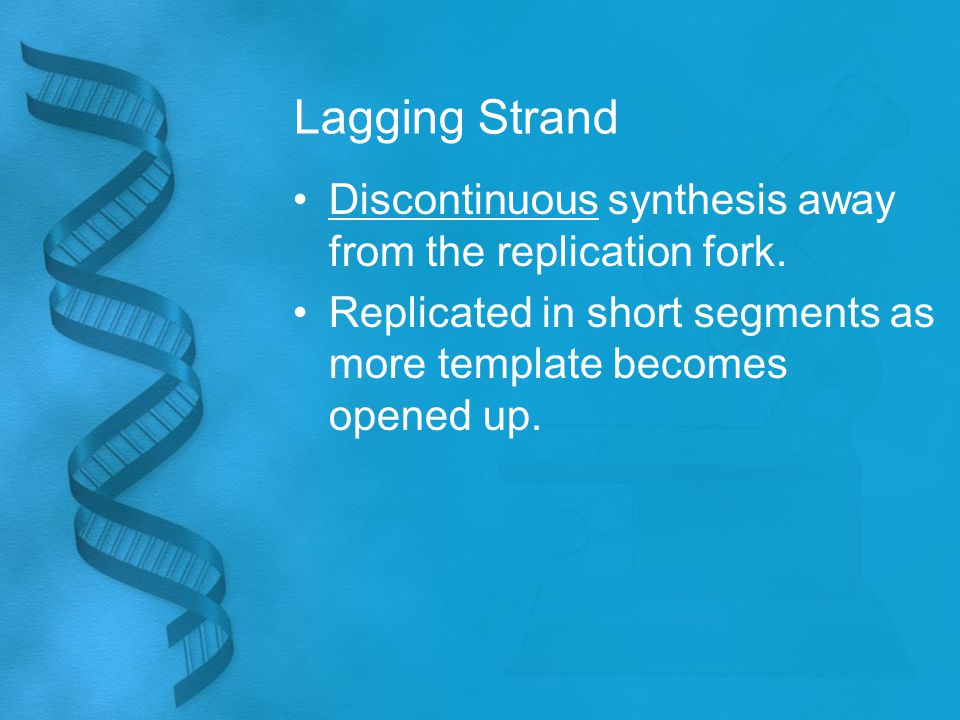 Lagging Strand Discontinuous synthesis away from the replication fork.