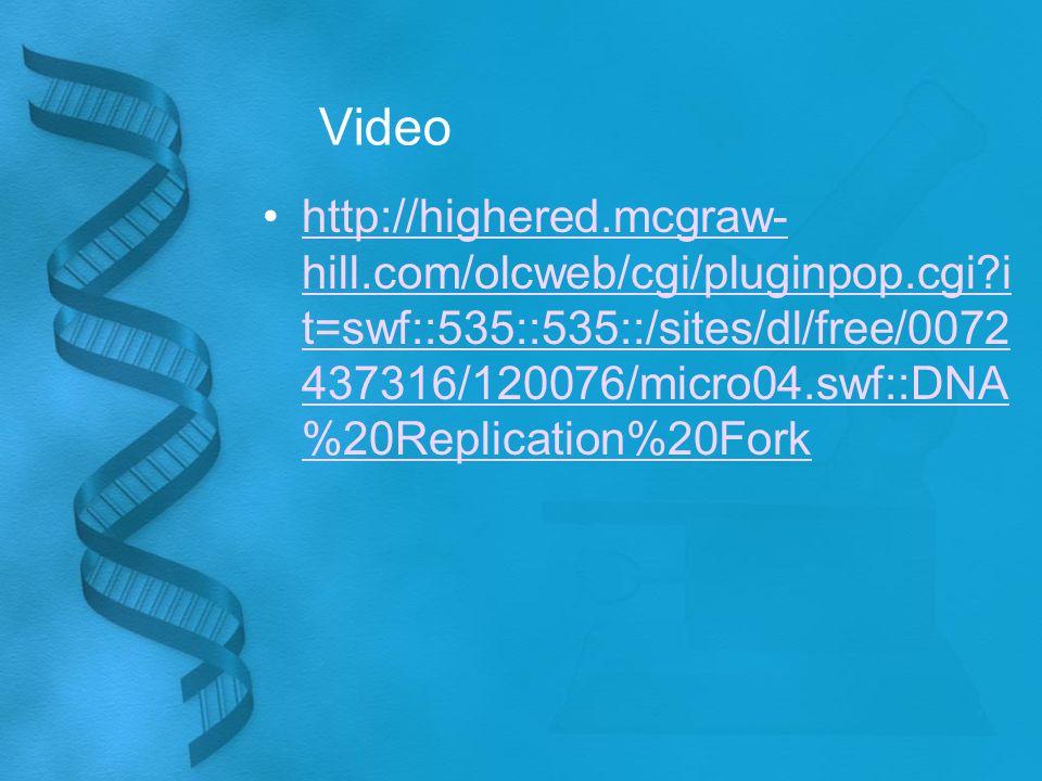 Video http://highered.mcgraw- hill.com/olcweb/cgi/pluginpop.cgi i t=swf::535::535::/sites/dl/free/0072 437316/120076/micro04.swf::DNA %20Replication%20Forkhttp://highered.mcgraw- hill.com/olcweb/cgi/pluginpop.cgi i t=swf::535::535::/sites/dl/free/0072 437316/120076/micro04.swf::DNA %20Replication%20Fork