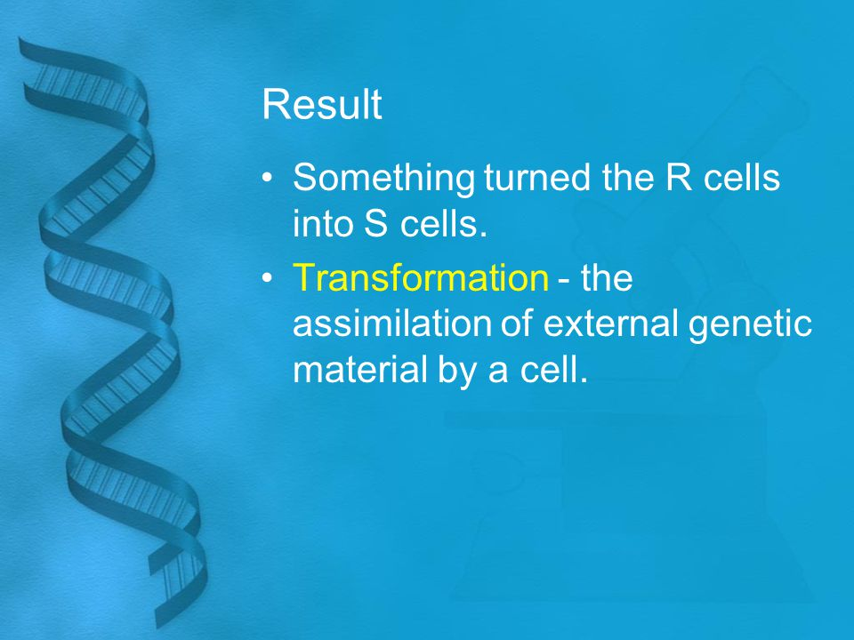 Result Something turned the R cells into S cells. Transformation - the assimilation of external genetic material by a cell.