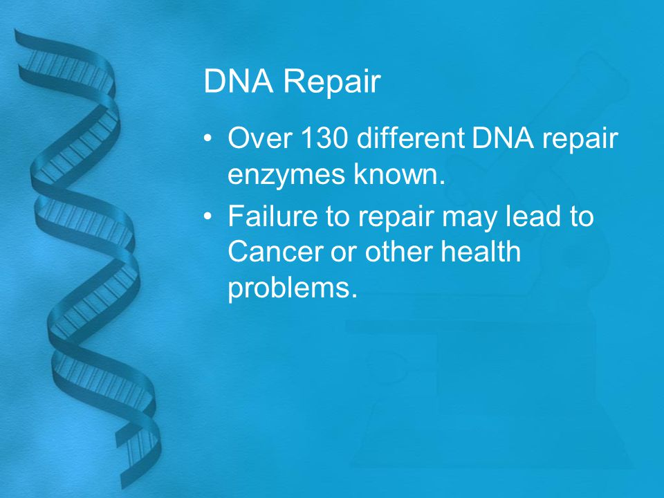 DNA Repair Over 130 different DNA repair enzymes known. Failure to repair may lead to Cancer or other health problems.