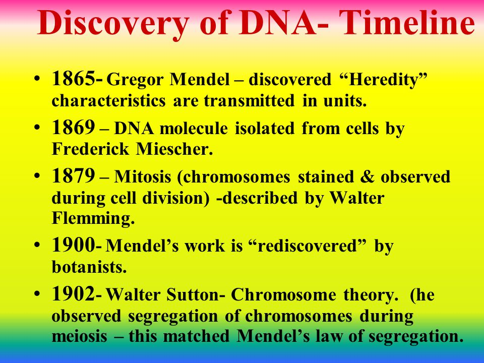 "Discovery of DNA- Timeline 1865- Gregor Mendel – discovered ""Heredity"" characteristics are transmitted in units. 1869 – DNA molecule isolated from cel"