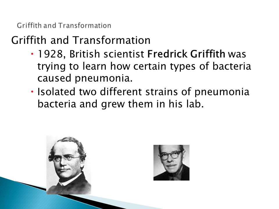Griffith and Transformation  1928, British scientist Fredrick Griffith was trying to learn how certain types of bacteria caused pneumonia.