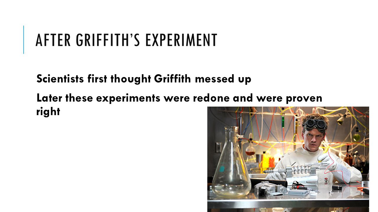 AFTER GRIFFITH'S EXPERIMENT Scientists first thought Griffith messed up Later these experiments were redone and were proven right