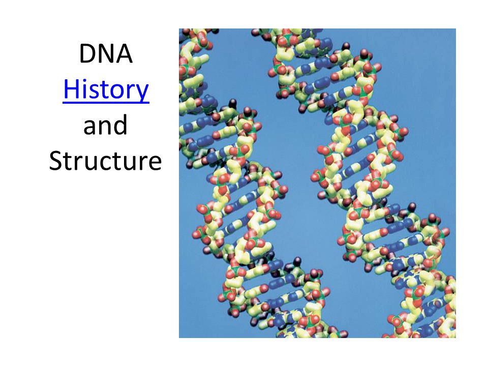DNA History and Structure History