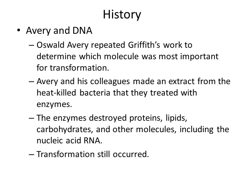 History Avery and DNA – Oswald Avery repeated Griffith's work to determine which molecule was most important for transformation.