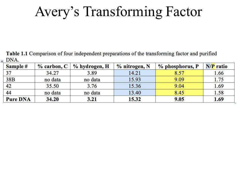 Avery's Transforming Factor