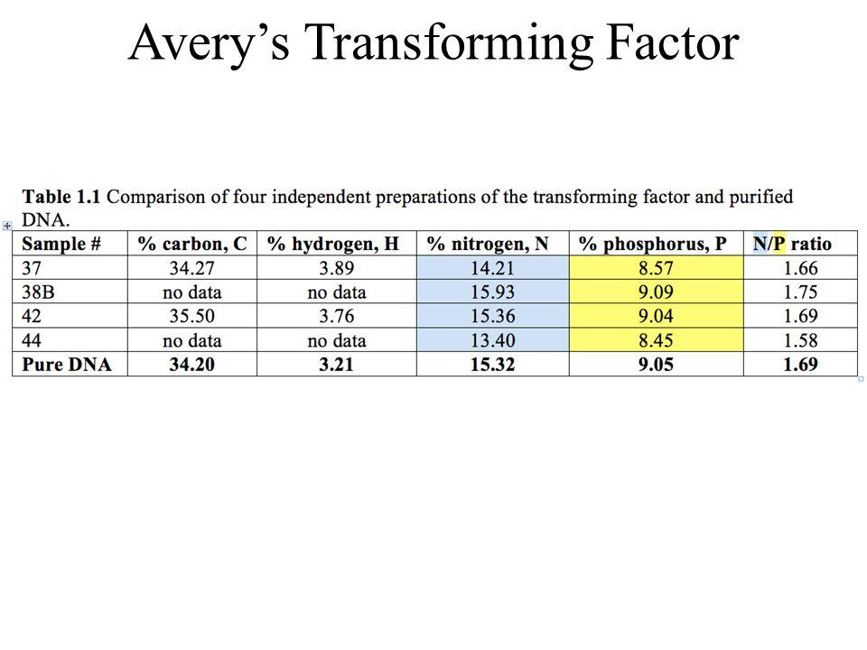 Five Amino Acids