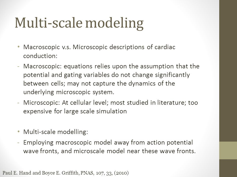 Multi-scale modeling Macroscopic v.s. Microscopic descriptions of cardiac conduction: -Macroscopic: equations relies upon the assumption that the pote