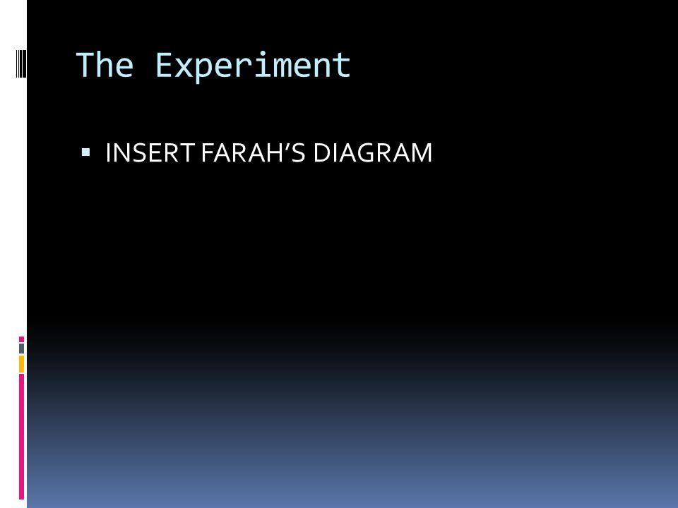 The Experiment  INSERT FARAH'S DIAGRAM