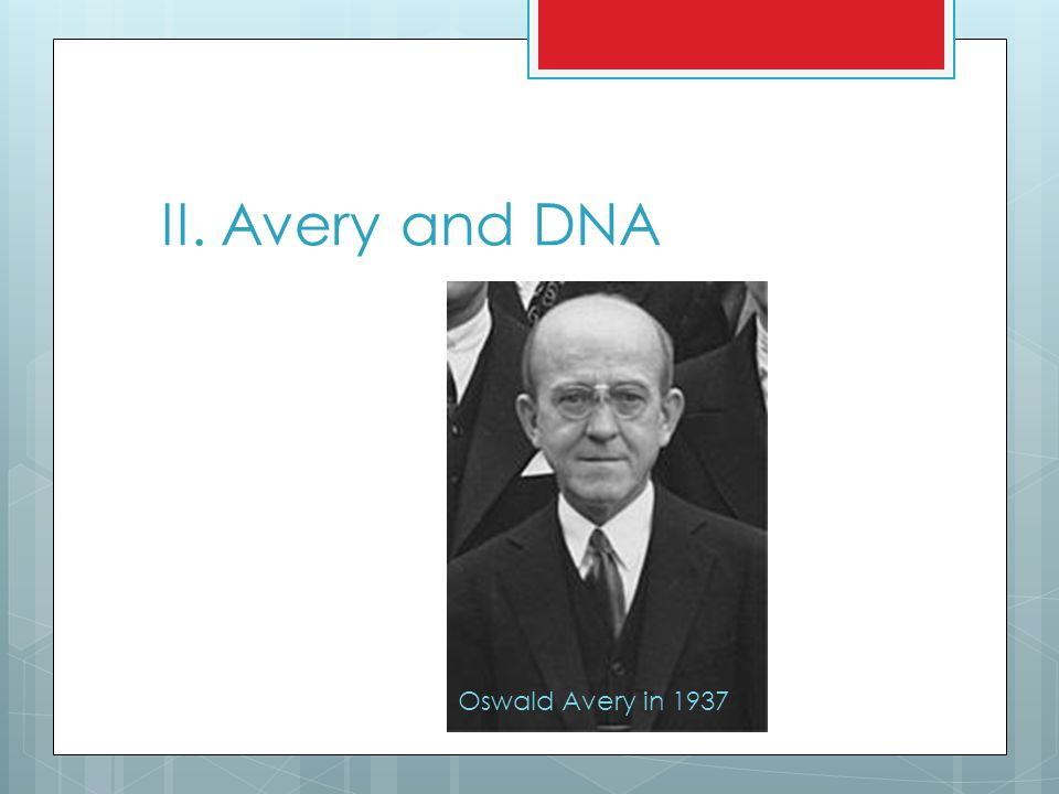 II. Avery and DNA Oswald Avery in 1937