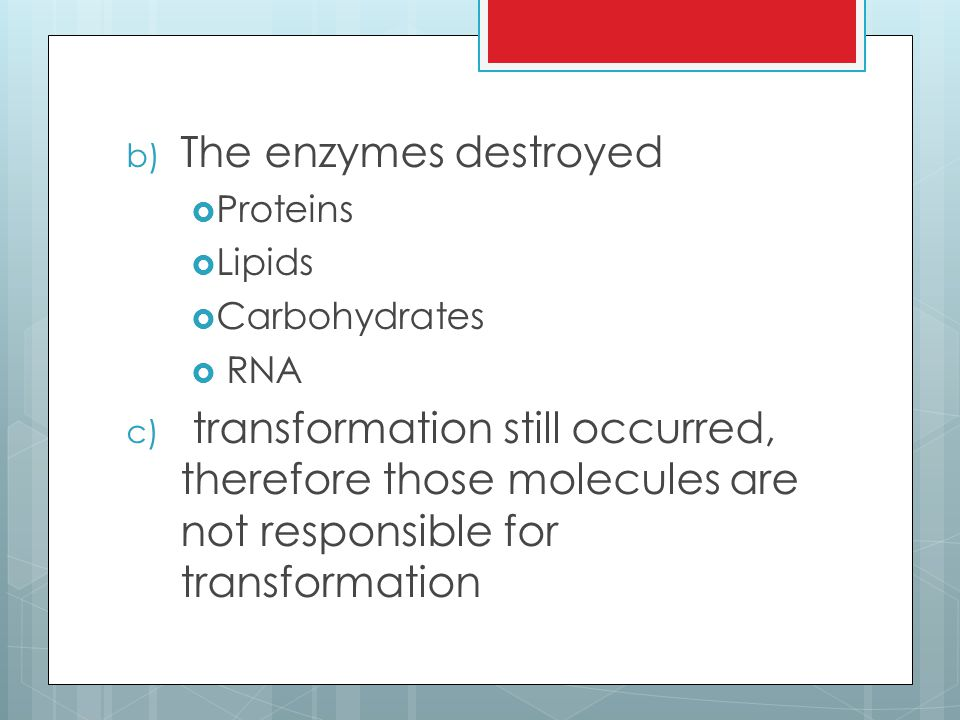b) The enzymes destroyed  Proteins  Lipids  Carbohydrates  RNA c) transformation still occurred, therefore those molecules are not responsible for transformation