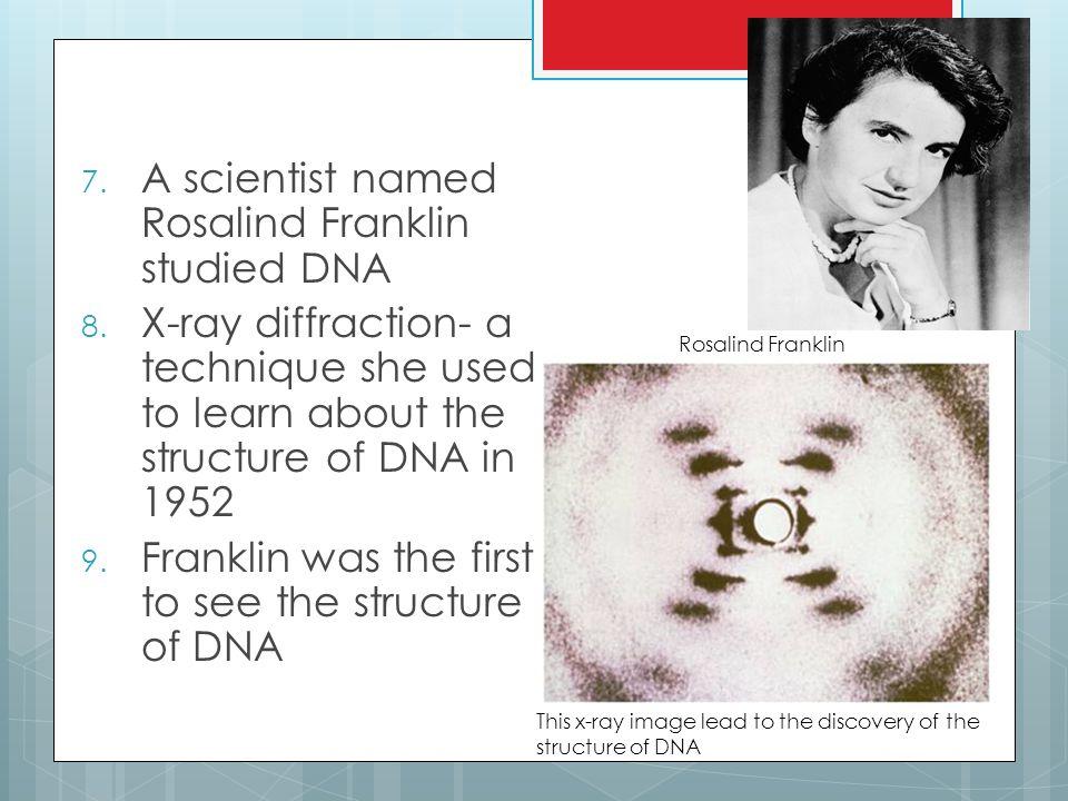 7.A scientist named Rosalind Franklin studied DNA 8.