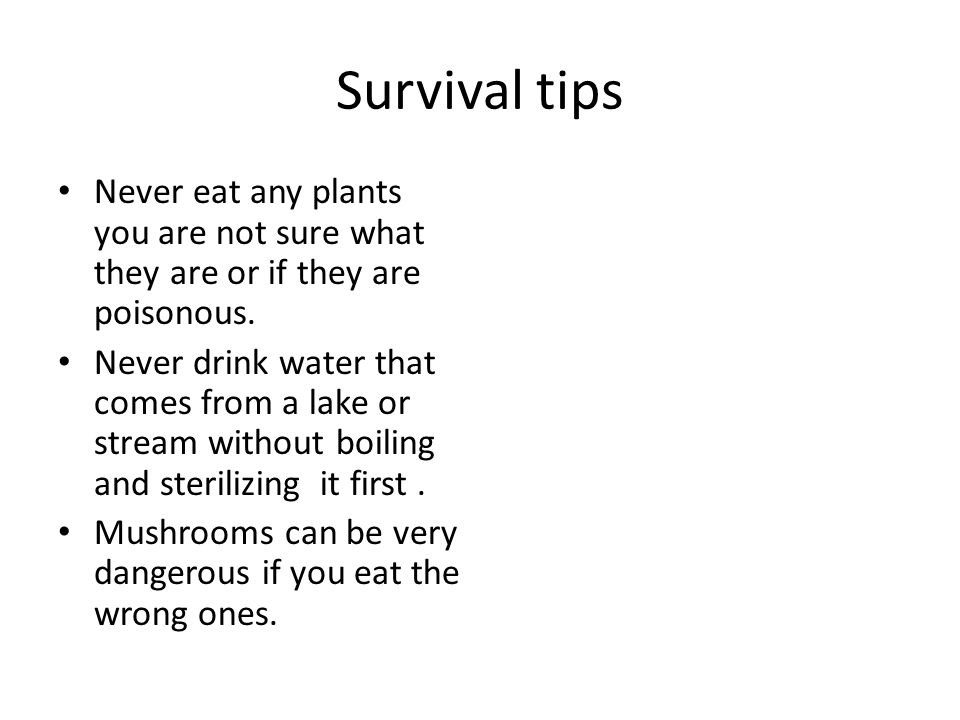 Survival tips Never eat any plants you are not sure what they are or if they are poisonous.