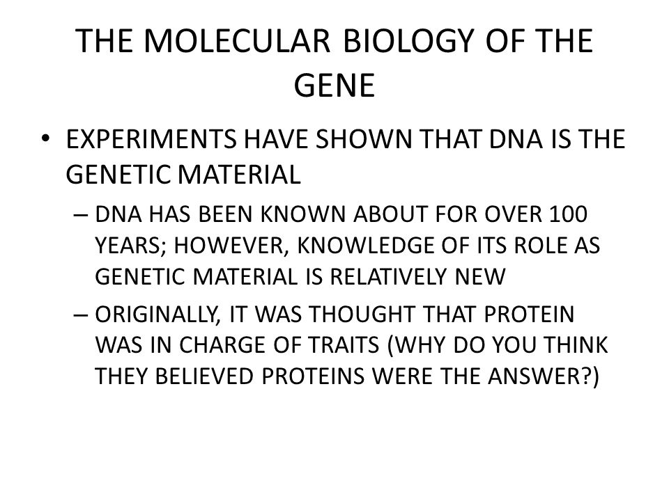 THE MOLECULAR BIOLOGY OF THE GENE GRIFFITH'S EXPERIMENT
